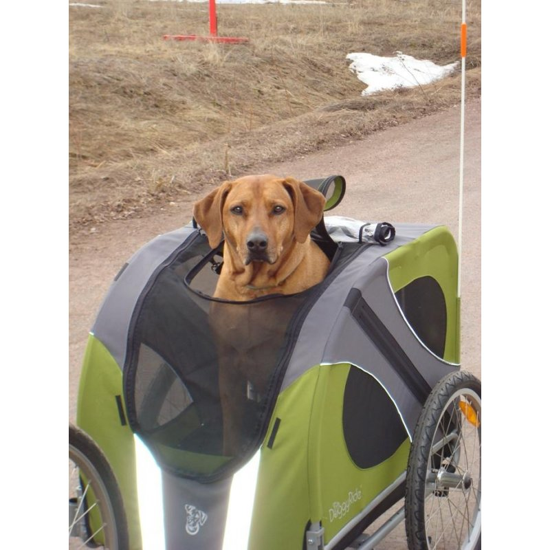 Doggyride - Hunde-fahrradanh U00e4nger Novel Trailer