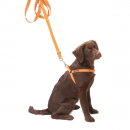 Farm-Land | Hunde-Geschirr Safety Dog- orange- reflektierend
